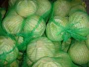 Продажа капусты,  лука,  каротофеля,  моркови (оптом)