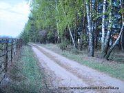 Земельный участок в Медовке