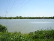 Земельный участок 12.5 Га с зарыбленным прудом (новоусманский район)