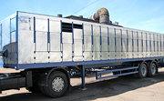 Полуприцеп скотовоз САТ-47К,  САТ-47К-01