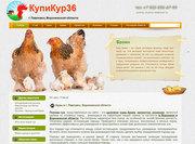 Купикур36 - куры брама,  опрпингтон,  кохинхин В Воронеже и области