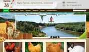 Продажа породистых кур брама,  орпингтон,  кохинхин в Воронеже и Воронеж