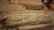 Свежемороженая рыба от производителя!