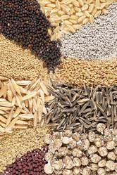 На посевную кампанию семена многолетних трав